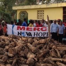 plantain distribution